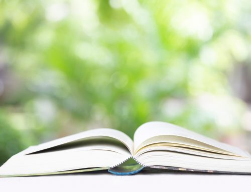 Local Children's Authors to lead Family Day reading event on St. Armands Circle
